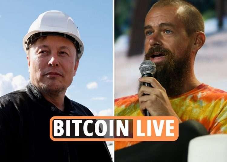 Bitcoin price news LIVE – Dogecoin founder thanks Elon Musk for tweet ...